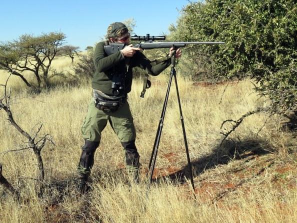 Taking aim on Impala